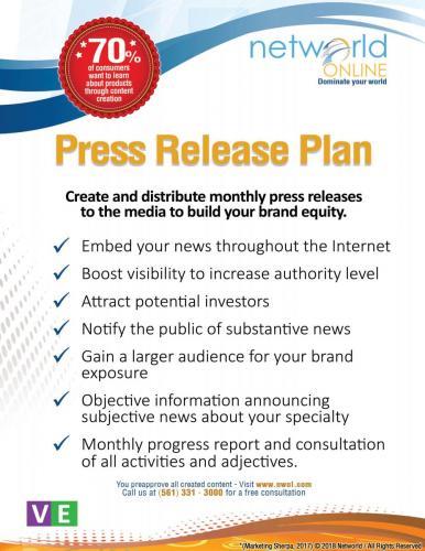 Press Release Plan